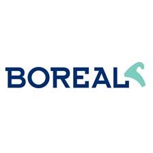 http://www.e-boreal.com/ing/comienzo.htm